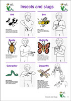 Auslan Children's Picture Dictionary - Volume 2, Second Edition - Page Sample